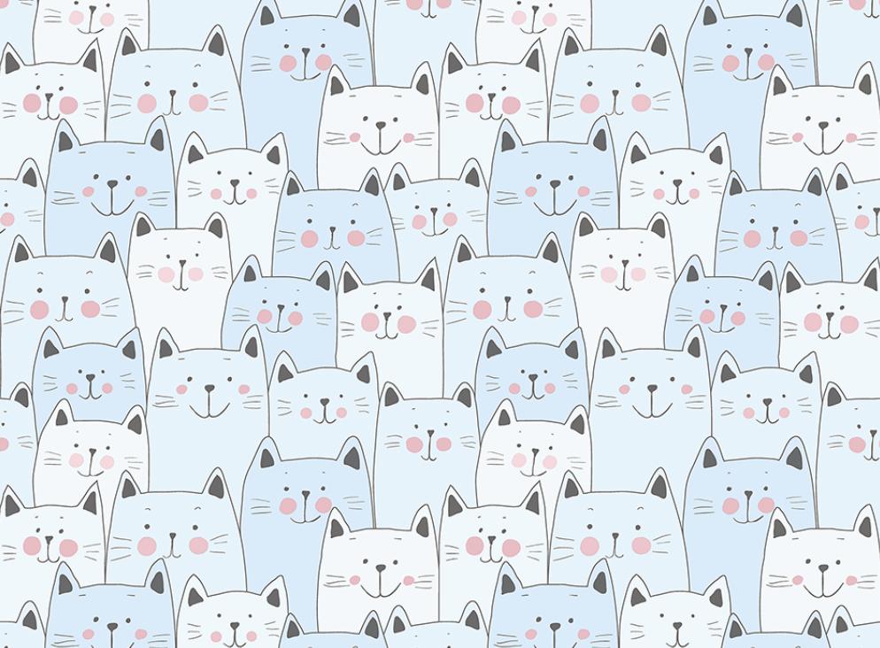 134-3 Miaou