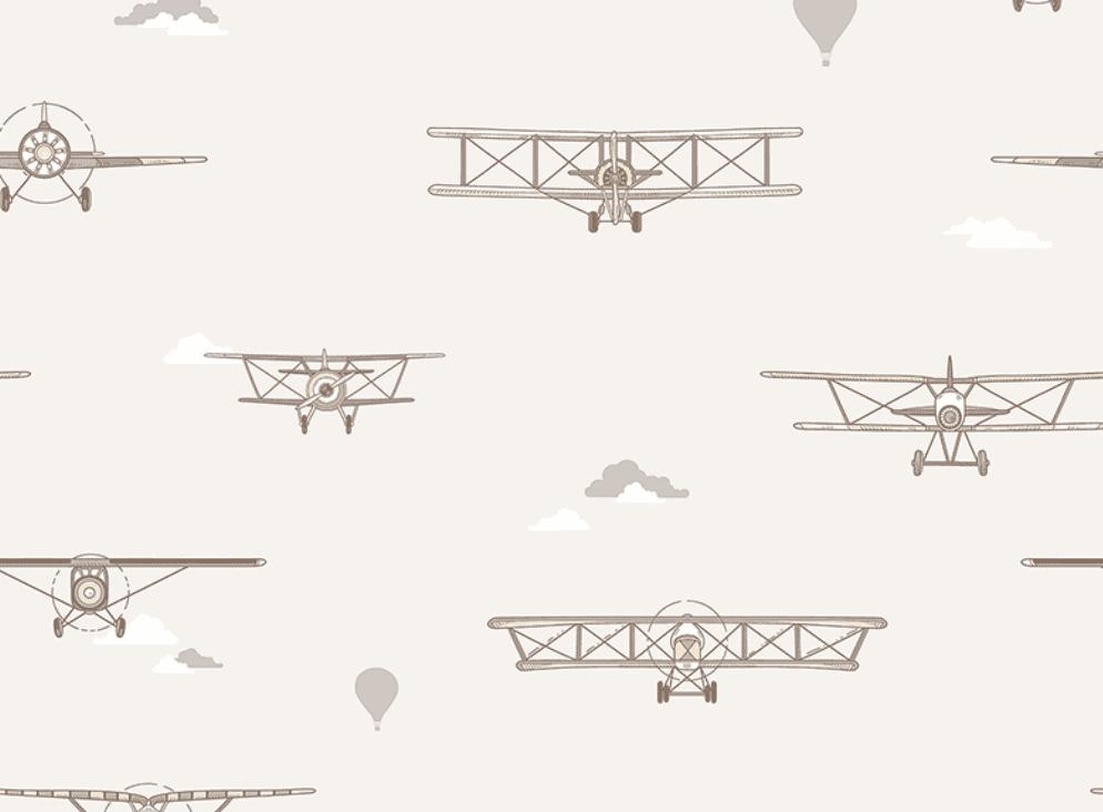 135-1 Biplane