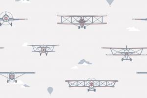 135-3 Biplane