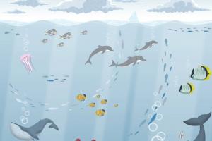 151-1 Cousteau
