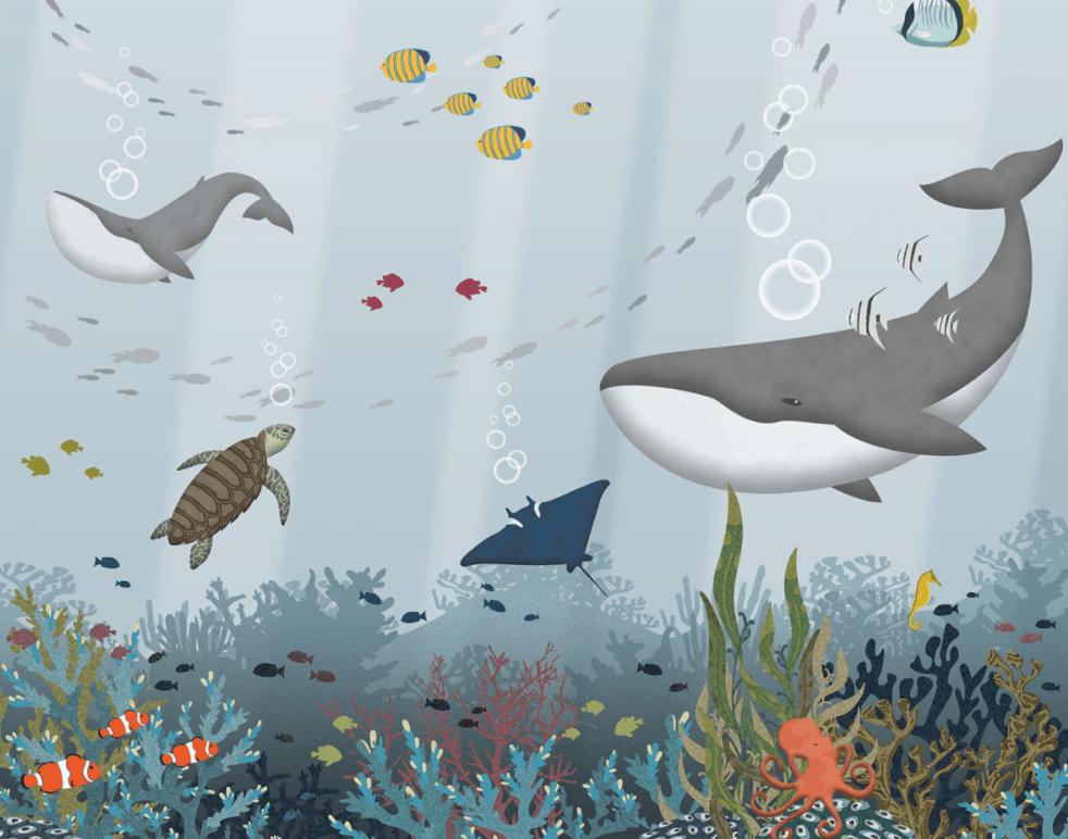 151-2 Cousteau
