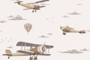 152-1 Biplane