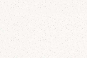 7005-1 Stars Mint